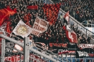 18/19_hoffenheim-fcn_fano_11