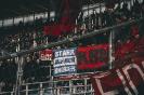 18/19_hoffenheim-fcn_fano_13