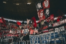 18/19_hoffenheim-fcn_fano_21
