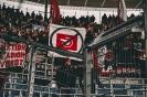 18/19_hoffenheim-fcn_fano_08
